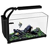 Aqua One 52040 REFLEX 15 Aquarium Kit, Black