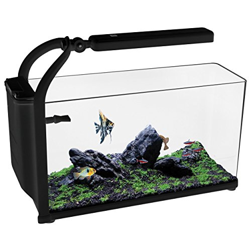 Aqua One 52040 REFLEX 15 Aquarium Kit, Black by Aqua One