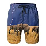 Mens/Men's Africa Elephants Summer Beach Shorts Casual Pants Printing Quick Dry Beach Shorts Swim Trunk