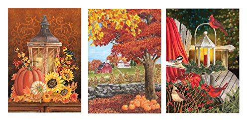 Briarwood Lane 3 Pc. Set - Fall Lantern Primitive Pumpkins/Sunflower Garden Flag, Autumn Day Fall Leaves Garden Flag, & Winter Lantern Holly Garden Flag ()