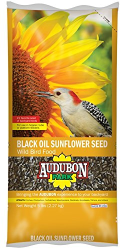 Audubon Park 12259 Black Oil Sunflower Seed Wild Bird Food, 5-Pounds - Make Platform Bird Feeder
