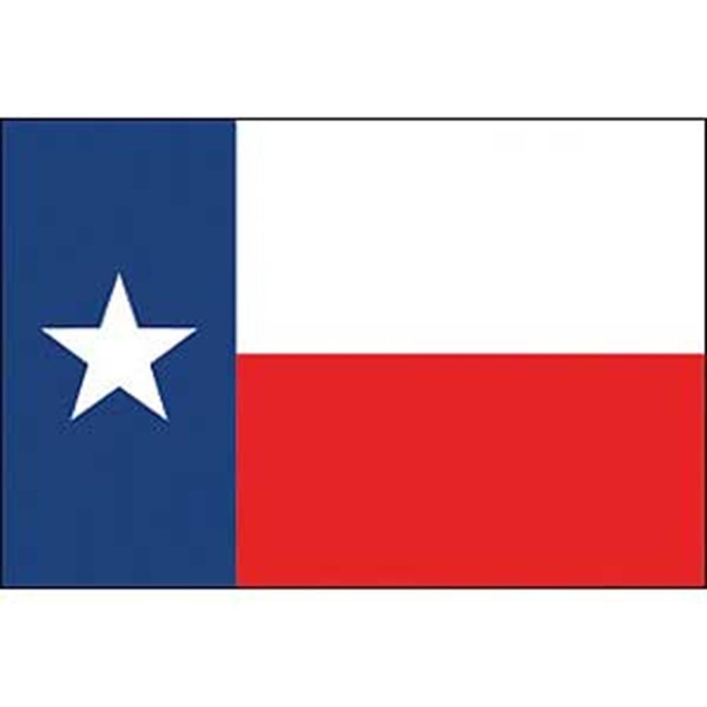 EagleEmblems F8544 Flag-Texas (12in x 18in)