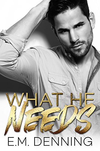 What He Needs (Desires Book 1) (What Does Gay M)