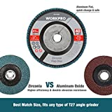 WORKPRO 5 Pack Zirconia Flap Disc, 40 Grit, Angle