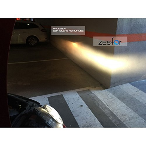 Zesfor Kit luz Led Cruce para Audi (Incluye Kit led adaptadores + canceladores): Amazon.es: Coche y moto