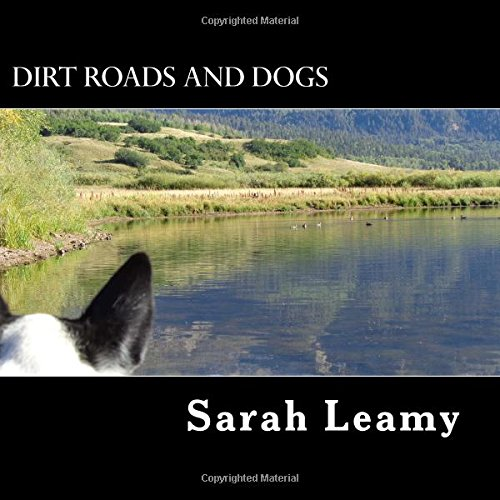 Dirt Roads And Dogs: A Photo Essay of the Southwest (Volume 1) ebook
