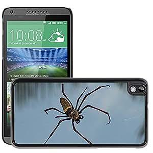 Super Stella Slim PC Hard Case Cover Skin Armor Shell Protection // M00104092 Spider Tropics Arachne Insect // HTC Desire 816