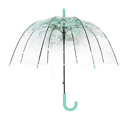 LJSHU Paraguas Transparente Plegables Semiautomático Transparente Claro De La Cereza Romántica,Green