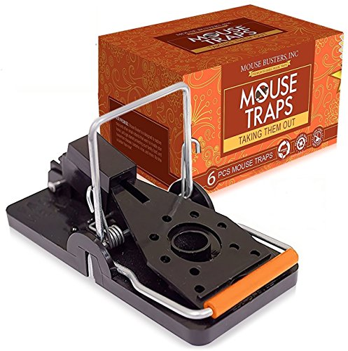 (6- Pack) Mouse Traps Premium (2 x 4 Inches) Snap Mice Trap catcher