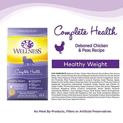 Wellness Brand Dog Food Australia