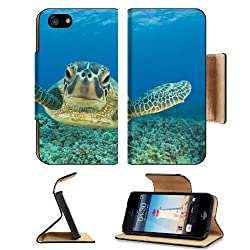 Underwater Marine Life Sea Turtle Apple iPhone 5 / 5S Flip Cover Case with Card Holder