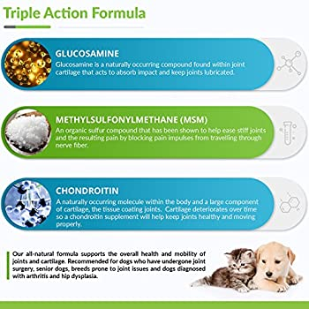 Glucosamine For Dogs - Treats - Joint & Hip Formula With Msm, Chondroitin & Hyaluronic Acid - 65 Soft Chews 5