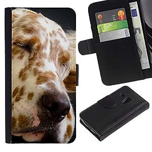 Billetera de Cuero Caso Titular de la tarjeta Carcasa Funda para Samsung Galaxy S3 MINI NOT REGULAR! I8190 I8190N / Great Dane Spots Dog Canine Pet / STRONG