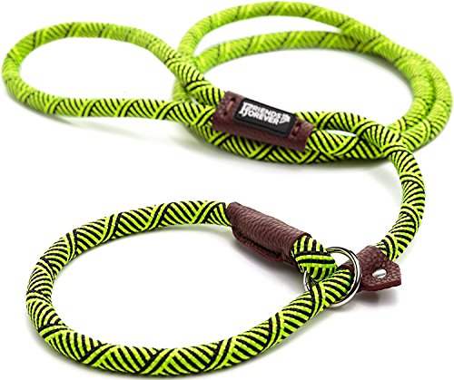 Friends Forever Extremely Durable Dog Slip Rope Leash Premium Quality Mountain Climbing Lead Strong Sturdy Support Pull for Large and Medium Sized Pet 6 feet (Harness Lead)