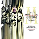 Lost in Meditation - Meditative Gregorian Chants, Vol. 2