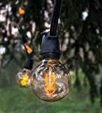 Hometown Evolution, Inc. Edison Bulb Filament String Lights (Commercial 25 Foot Black Wire, G50 Zig Zag Edison)
