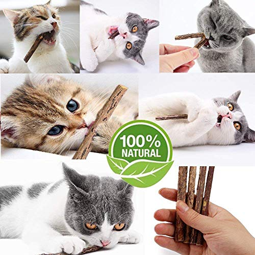 WoLover Cat Catnip Sticks Natural Matatabi Silvervine Sticks - Cleaning Teeth Molar Tools Kitten Cat Chew Toy Natural Catnip Mouse Cat Toy 4