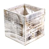 """Koyal Wholesale Square Cube Shabby Chic Wood Vase (Pack of 6), 6"""", White"""
