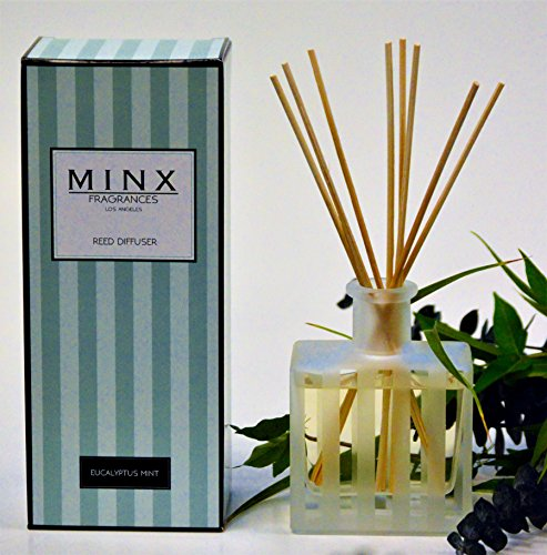 MINX Fragrances 48hr SALE! Stress Relief EUCALYPTUS MINT Scented Reed oil Diffuser Gift Set by Rosemary, Eucalyptus Leaves, Garden Mint & Citrus Notes | Great Gift Idea! USA Made by MINX Fragrances