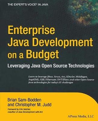 Enterprise Java Development on a Budget: Leveraging Java