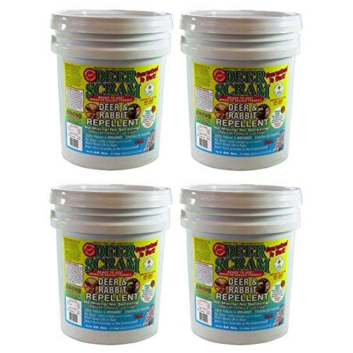 (DeerScram 1025 Granular 25-Pound Organic Deer, Rabbit Repellent, 4-Pack)