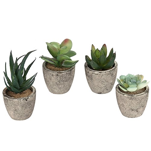 Assorted Decorative Artificial Succulent Plants with Gray Pots, Set of (Faux Succulent)
