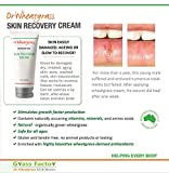 Dr Wheatgrass Antioxidant Skin Recovery Cream 85ml