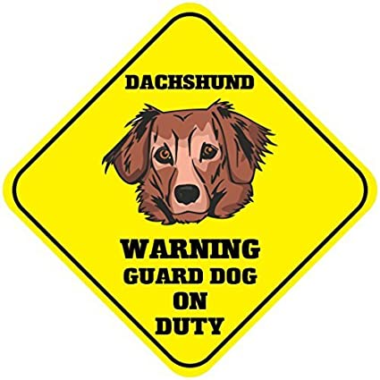 DACHSHUND GUARD DOG ON DUTY  Steel Sign warning novelty,