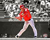 Mike Trout Los Angeles Angels 2012 Spotlight Action Photo #2 8x10