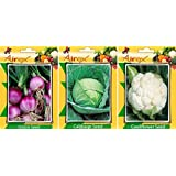 Seed Category:Onion, Cabbage, Cauliflower Vegetables Seed (Pack of 15 Seed Onion + 15 Cabbage + 15 Cauliflower Seed)