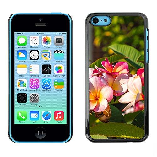Premio Sottile Slim Cassa Custodia Case Cover Shell // F00004268 fleurs // Apple iPhone 5C