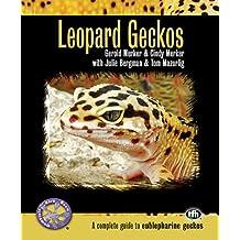 Leopard Geckos: A Complete Guide to Eublepharine Geckos