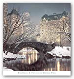 Twilight in Central Park Landscape Art Poster Print by Rod Chase, 77x82