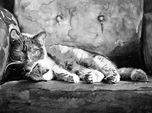 Black and White Cat Art, Tabby Cat Painting Watercolor Cat Wall Art Print, Feline Art, Cat Owner Gift, Kitten Wall Art Print, Cat Wall Hanging Gift (Tabby White Cats Black)