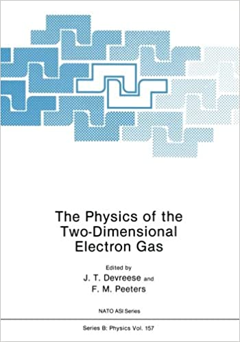 The Physics of the Two-Dimensional Electron Gas (Nato ASI Subseries B:)
