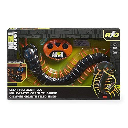 Animal Planet Giant Remote Control Centipede, with Charger by Toys R Us (Image #1)