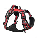 PoyPet No Pull Dog Harness, [Release on
