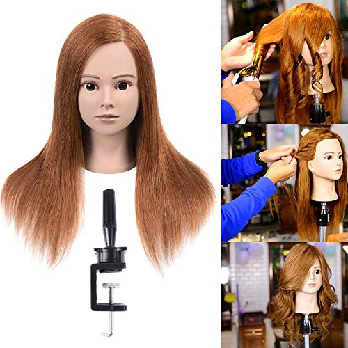 100% Human Hair Mannequin Head For Braiding Manikin Head For Hairdresser Professional Cosmetology Mannequin Head With Human Hair Auburn Brown 20-22'(From Forehead to The Back Hair End)