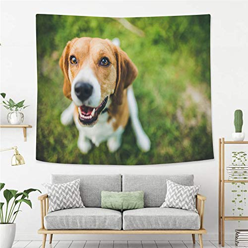 y Wall Hanging Beagle Tapestry, Living Room Bedroom Decoration Tapestry, Mattress, Tablecloth ()