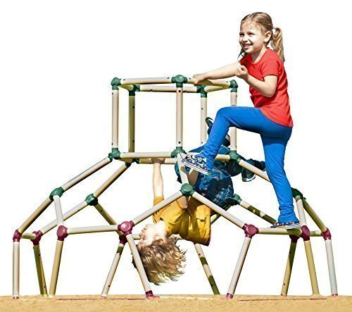 For Sale! Lil Monkey Playground Jungle Gym Monkey Bar Frame Dome Climber Set and App