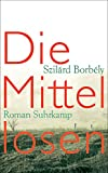 Die Mittellosen: Roman (suhrkamp taschenbuch)