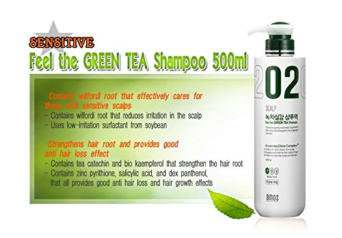 Amore Pacific Amos del cuero cabelludo 02 Feel The Green Tea pérdida del pelo Champú proteger el cuero cabelludo Care (Seneitive del cuero cabelludo) 500g: ...