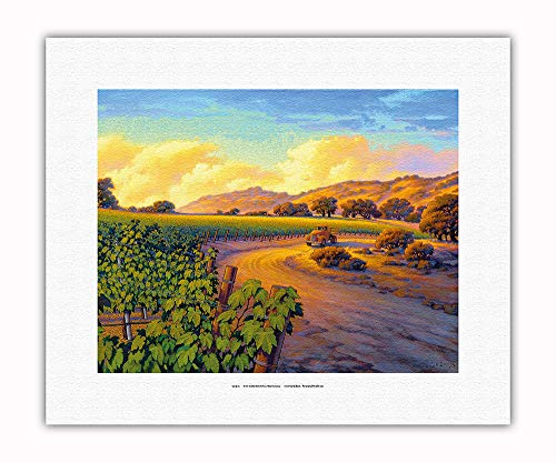 Pacifica Island Art - Vineyard Sunset - Wine Country Art by Kerne Erickson - Fine Art Rolled Canvas Print - 11in x 14in by Pacifica Island Art (Image #1)