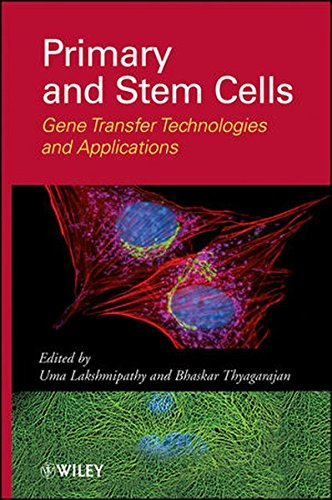 Primary And Stem Cells  Gene Transfer Technologies And Applications