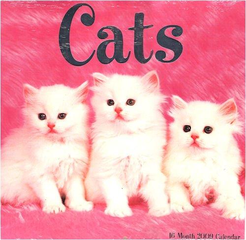 Cats 16 Month 2009 Calendar PDF