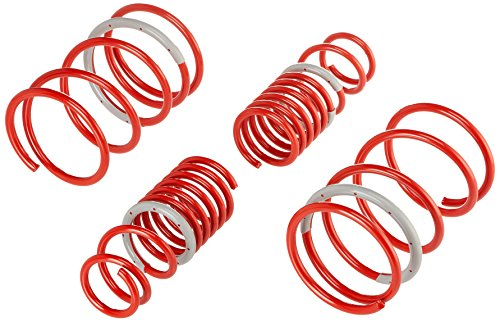 (Tanabe TDF046 DF210 Lowering Spring with Lowering Height 1.5/1.5 for 2002-2004 Acura RSX)