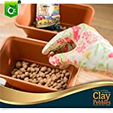 Organic Expanded Clay Pebbles Grow Media - Orchids