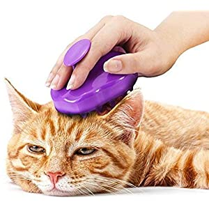 Cat Brush with Extra Soft Silicone Pins