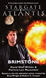 img - for Stargate Atlantis: Brimstone: SGA-15 by David Niall Wilson, Patricia Lee Macomber(October 1, 2010) Mass Market Paperback book / textbook / text book