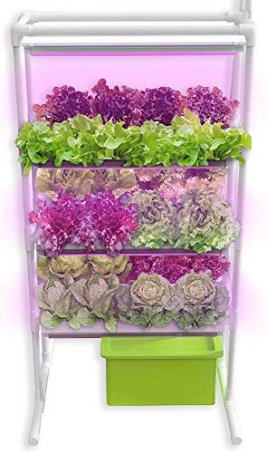 Vertical NFT Hydroponics Growing System - Full Hydroponic Kit for Indoor-Garden Soilless Planting - Grow Family-Safe Veg, Herbs and Salads Fast - 6 LED Grow Light, Timer, Pump, Reservoir with 24 Pods (Best Vertical Garden System)